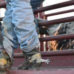 Best Wellington Boots for Farming