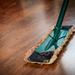 Best Broom for Cat Hair