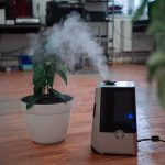 Best Non Filter Humidifier