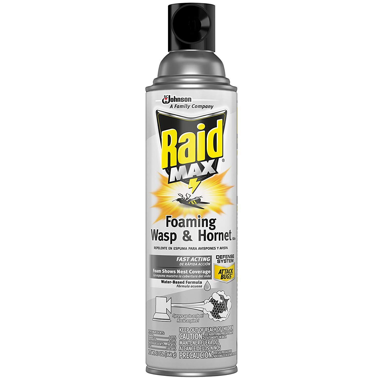 Raid Max Foaming Wasp & Hornet Killer