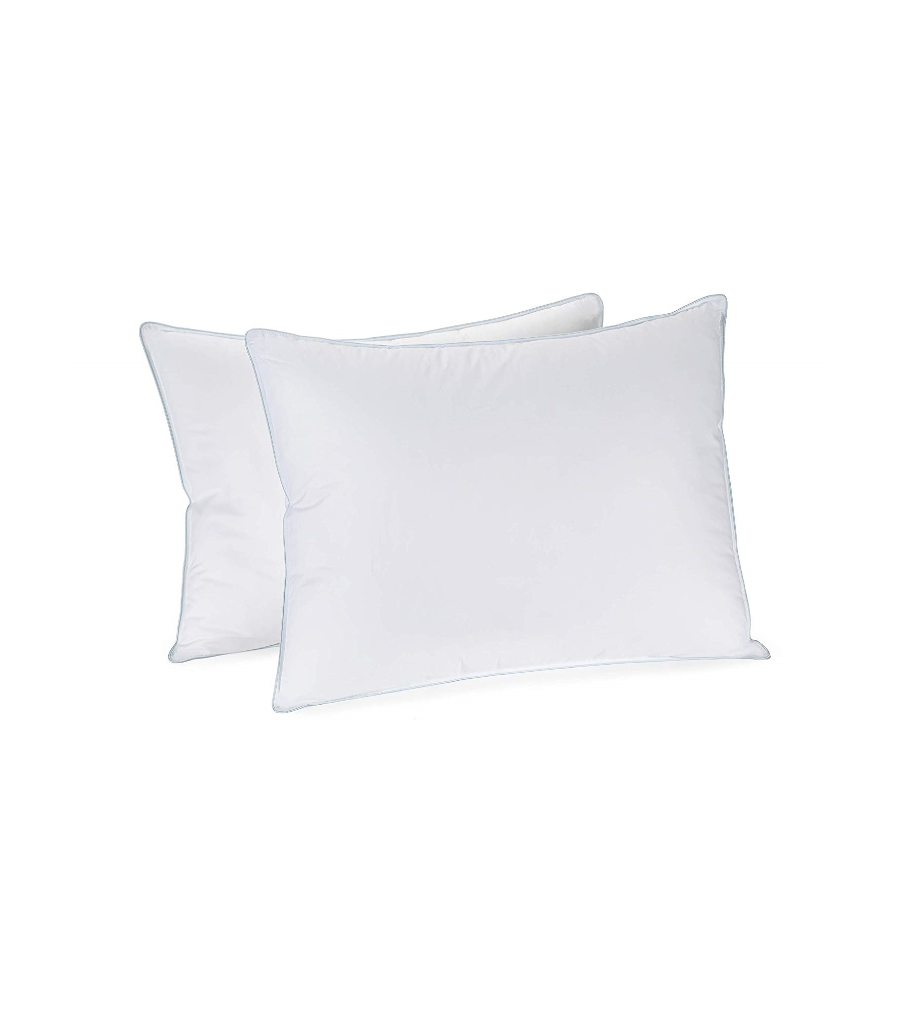 In Style Furnishings - Set of 2 Luxury Pillows